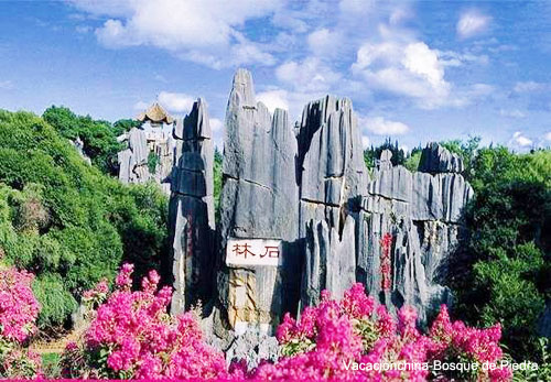Viajar Kunming Bosque de Piedra